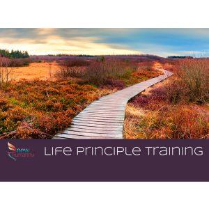 Life Principle Tools